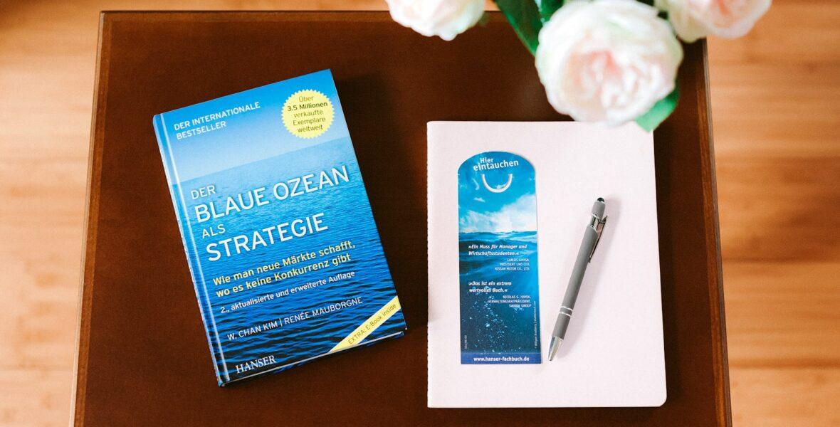 Buch der blaue Ozean als Strategie